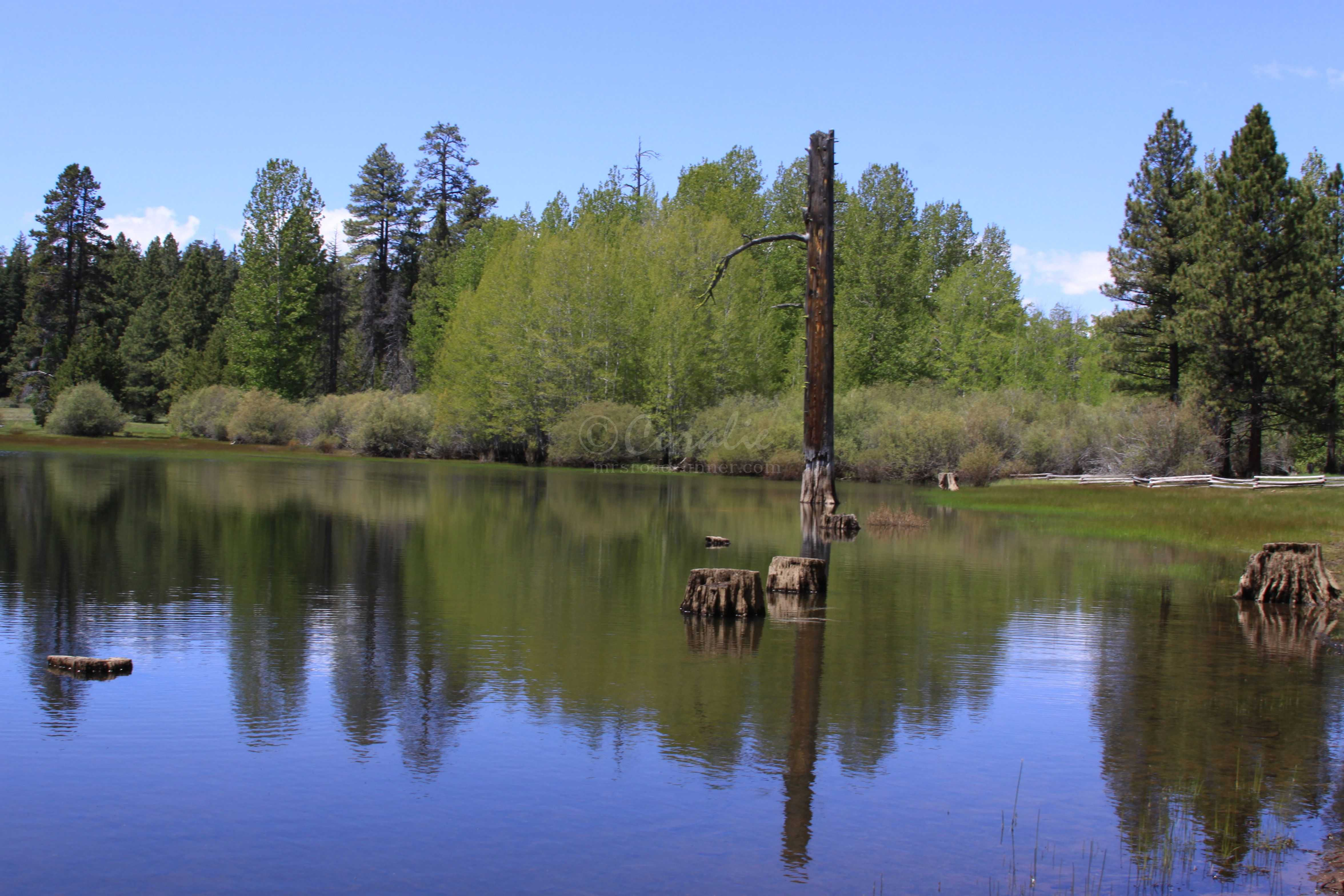 High Desert Lake