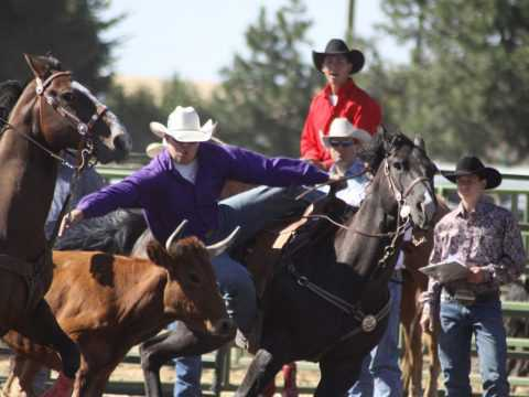 Rodeo Bulldogging